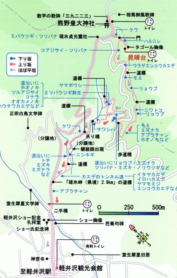 遊歩道x.jpg