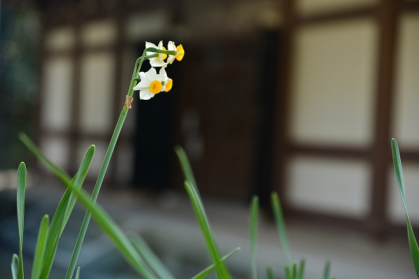 D6D_0199.jpg
