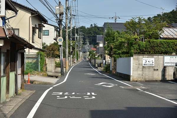 D81_1217.jpg