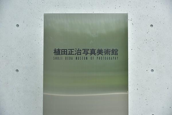 D81_1271.jpg