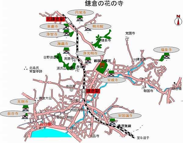 鎌倉花の寺.jpg